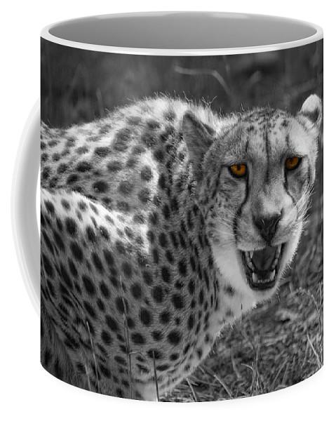 Cheetah Coffee Mug featuring the photograph No Argument by Donna Blackhall
