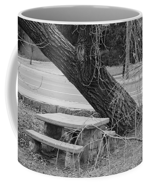 Trees Coffee Mug featuring the photograph No One Sits Here In Black And White by Rob Hans