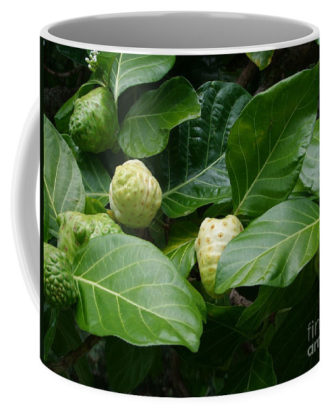 Green Coffee Mug featuring the photograph Noni by Mary Deal