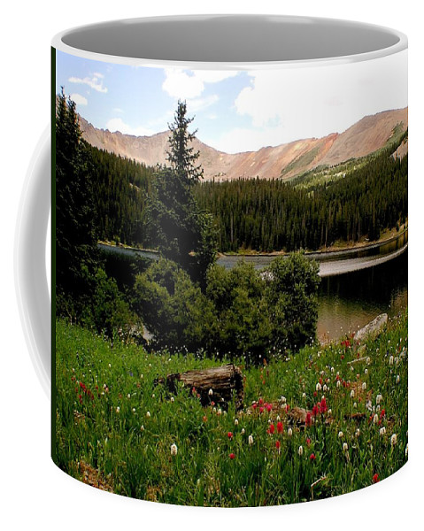 Lake Coffee Mug featuring the photograph North Fork Lake Colorado by Carol Milisen