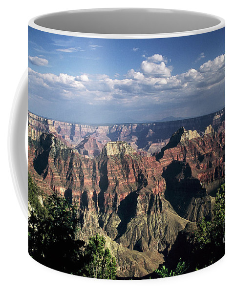 Grand Canyon; National Parks Coffee Mug featuring the photograph North Rim by Kathy McClure