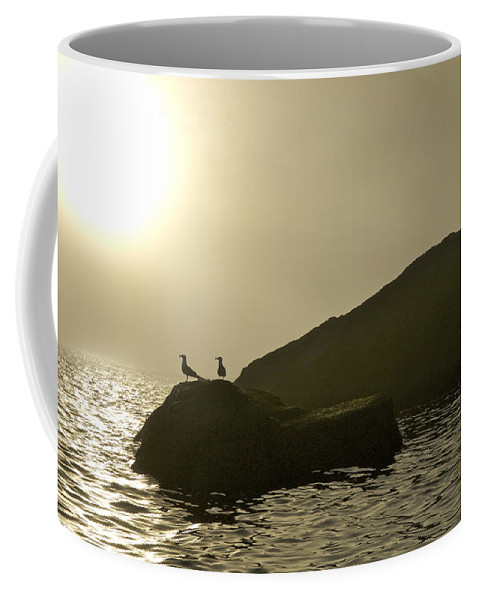 Animals In The Wild Coffee Mug featuring the photograph Norway, Tromso, Silhouette Of Pair by Keenpress