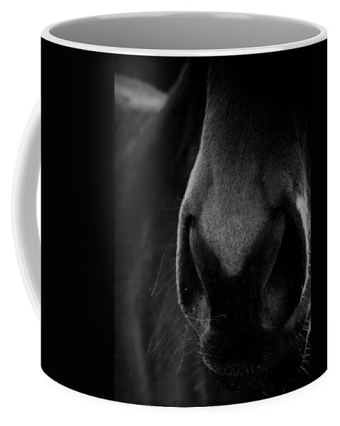 Horse Coffee Mug featuring the photograph Nose Best by Hannah Breidenbach