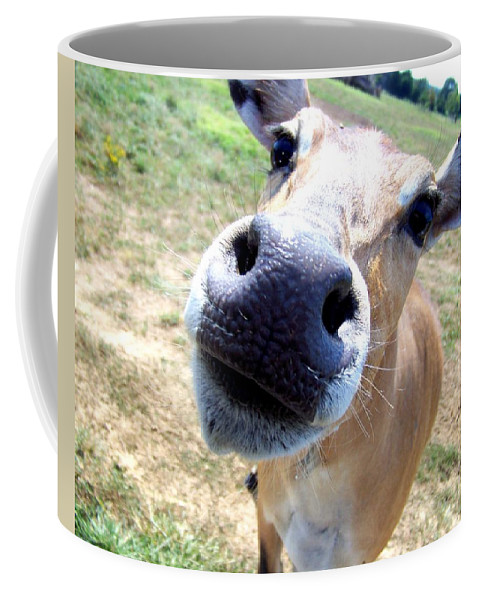 Cow Coffee Mug featuring the photograph Nosey Cow by Jai Johnson