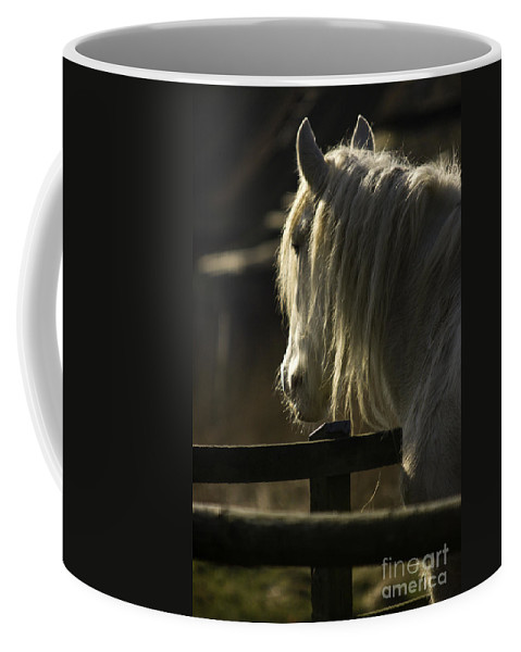 Horse Coffee Mug featuring the photograph Nostalgy by Angel Ciesniarska