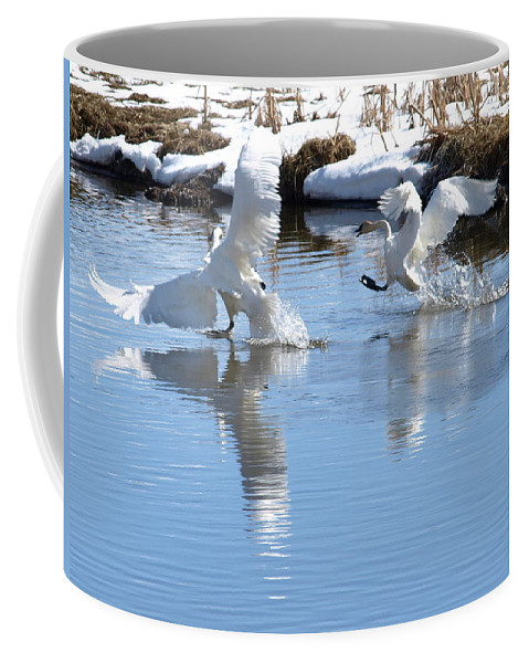 Birds Coffee Mug featuring the photograph Not Always Graceful by DeeLon Merritt