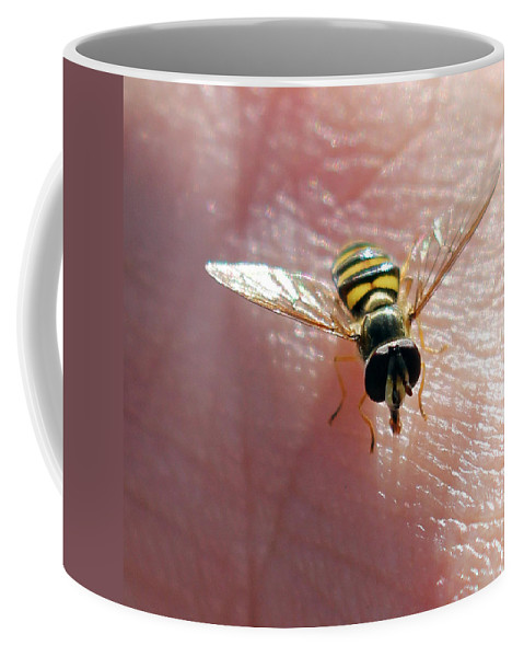 American Hover Fly Coffee Mug featuring the photograph Not Hovering by Jennifer Robin