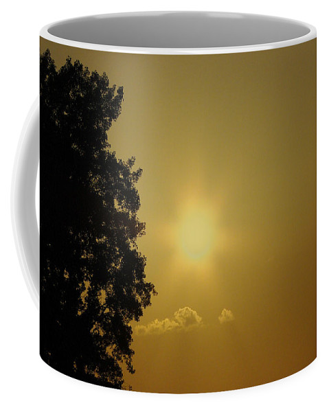 Sunset Coffee Mug featuring the photograph Not Your Average Mellow Yellow by Jenny Gandert