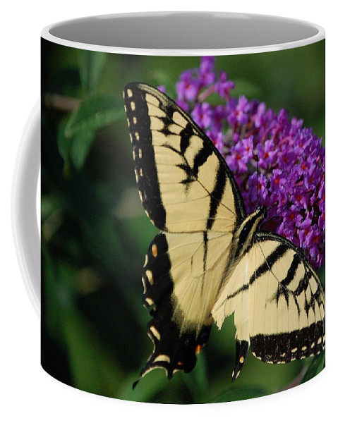 Butterfly Coffee Mug featuring the photograph Nothing is Perfect by Debbi Granruth