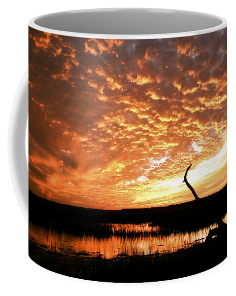 Sunset Coffee Mug featuring the photograph November Evening by Phill Doherty