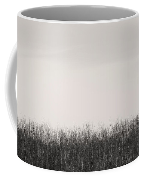Landscapes Coffee Mug featuring the photograph Now by The Artist Project