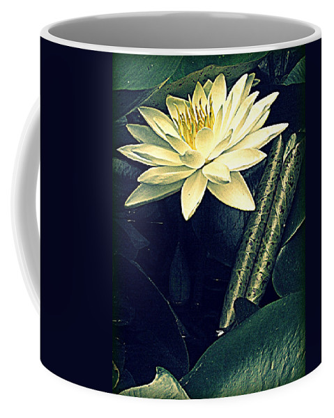Waterlily Coffee Mug featuring the photograph Nymphaea by Jessica Brawley