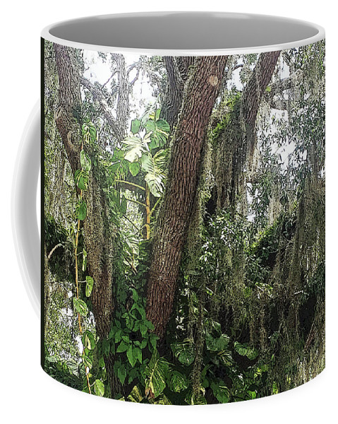 Oak Tree Coffee Mug featuring the photograph Oak Tree With Spanish Moss by Aimee L Maher ALM GALLERY