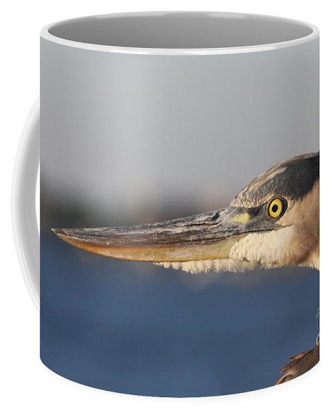 Heron Coffee Mug featuring the photograph Observant Eye - Heron Portrait by Christiane Schulze Art And Photography
