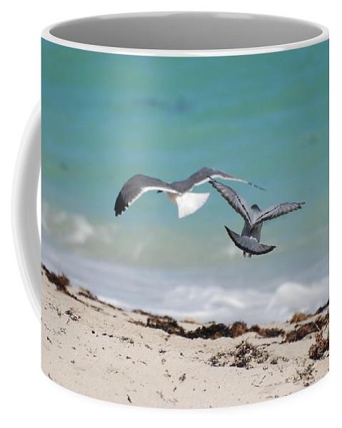 Sea Scape Coffee Mug featuring the photograph Ocean Birds by Rob Hans