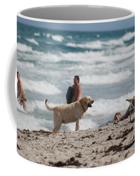 Waves Coffee Mug featuring the photograph Ocean Dog by Rob Hans