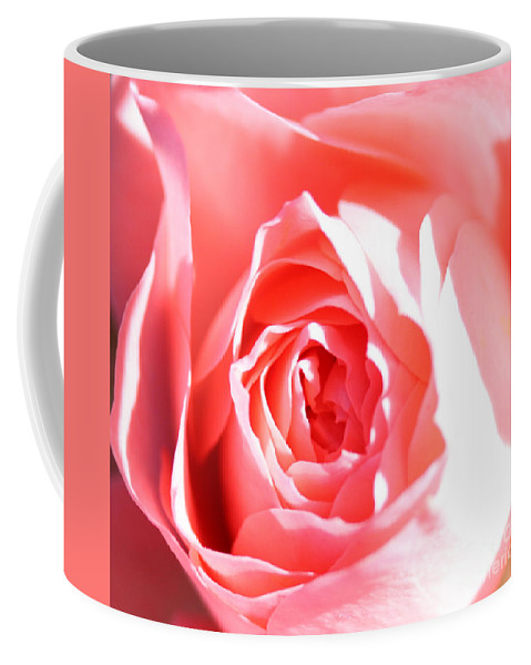 October 2010 Rose Coffee Mug featuring the photograph October Rose Close Up by Nick Gustafson