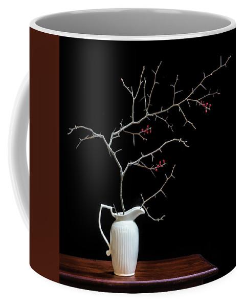 Flora Coffee Mug featuring the photograph Ode To Winter by Joy Schmitz