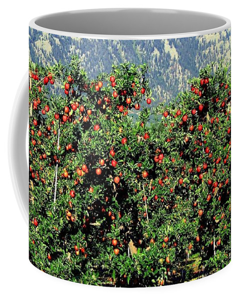 Apples Coffee Mug featuring the photograph Okanagan Valley Apples by Will Borden