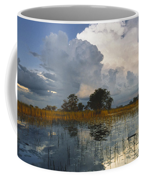 Africa Coffee Mug featuring the photograph Okavango Delta Evening by Sandra Bronstein