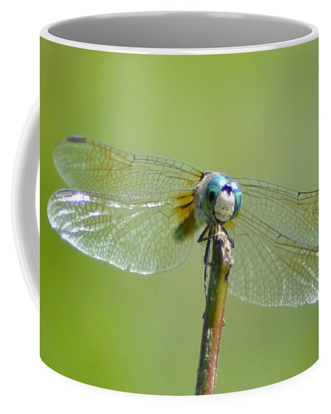 Blue Dragonfly Coffee Mug featuring the photograph Old Blue Eyes - Blue Dragonfly by Bill Cannon