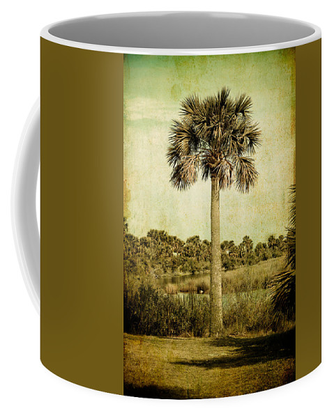 Palm Coffee Mug featuring the photograph Old Florida Palm by Rich Leighton