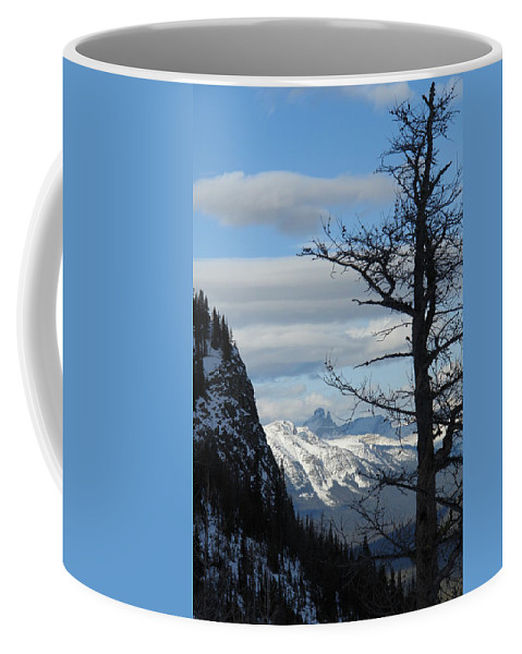 Old Larch Tree Coffee Mug featuring the photograph Old Larch Tree Has Best View by Greg Hammond