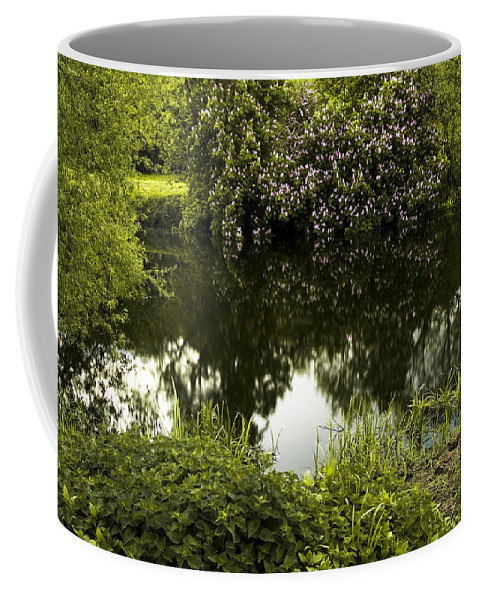 Countryside Coffee Mug featuring the photograph Old Pond by Svetlana Sewell