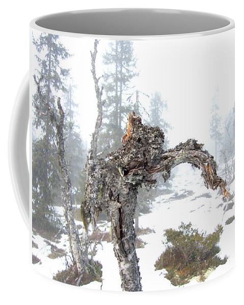 Tree Coffee Mug featuring the photograph Old Tree by Are Lund