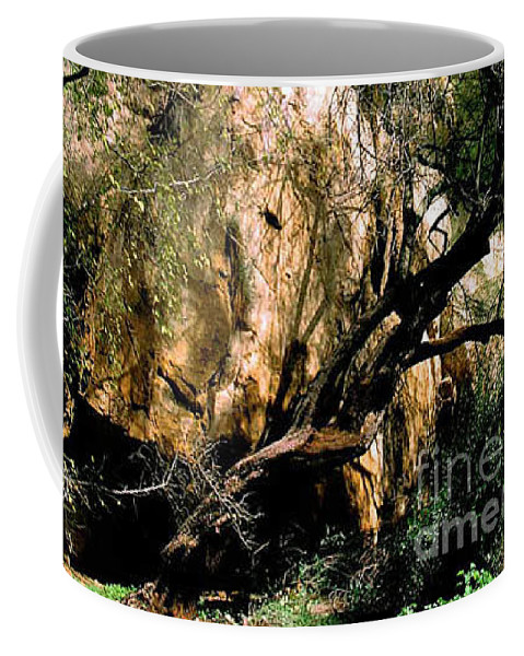 Trees Coffee Mug featuring the photograph Old Tree by Kathy McClure