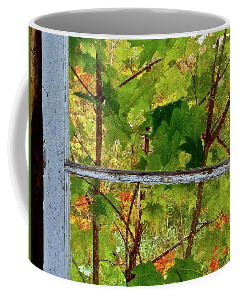 Buildings Coffee Mug featuring the photograph Old Window by Diana Hatcher