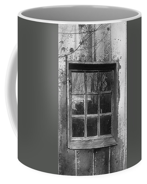 Coffee Mug featuring the photograph Old Window by Luciana Seymour