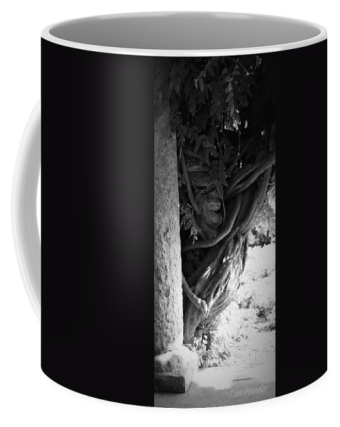 Wisteria Coffee Mug featuring the photograph Old Wisteria 2 by Tina Meador