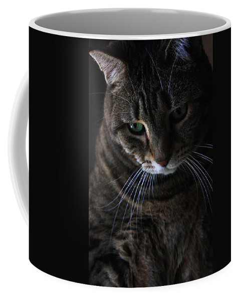 Cat Coffee Mug featuring the photograph Ole Green Eyes by Joe Kozlowski