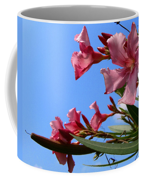 Flower; Florida; Oleander; Purple; Pink; Lavander; Sky; Blue; Clouds; Drought; Leaves; Green; South; Coffee Mug featuring the photograph Oleander Flowers Wilting In The Brutal Florida Sun by Allan Hughes