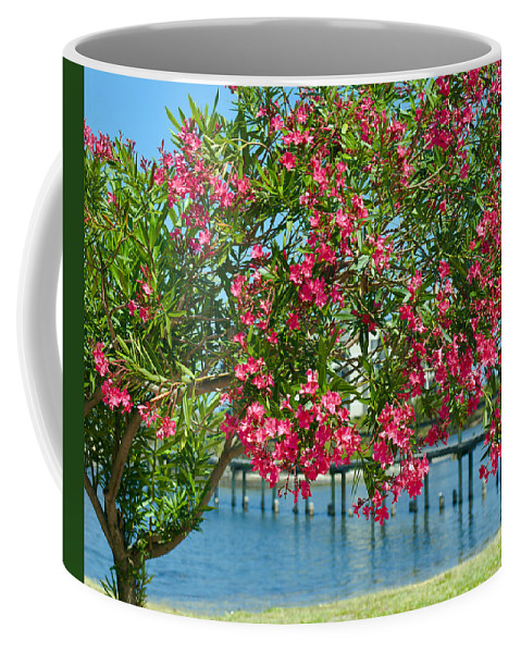 Florida; Indian; River; Melbourne; Nerium; Oleander; Red; Pink; Flower; Bush; Shrub; Poison; Poisono Coffee Mug featuring the photograph Oleander On Melbourne Harbor In Florida by Allan Hughes