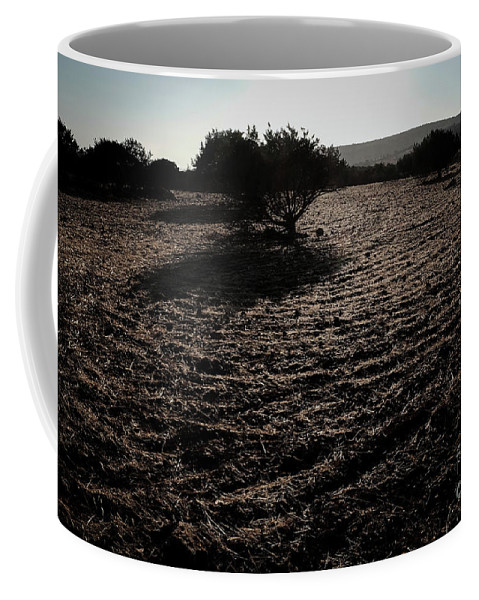 Olive Coffee Mug featuring the photograph Olive Oil by Konstantinos Katsouris