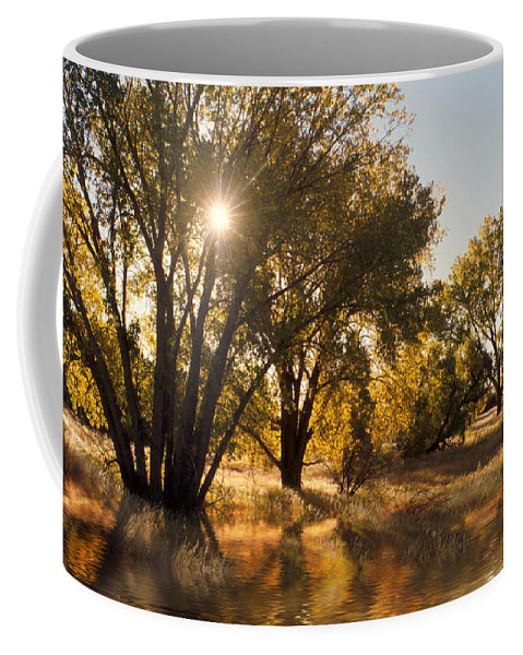 Ftrees Coffee Mug featuring the photograph Oliver Sunbursts by Jerry McElroy