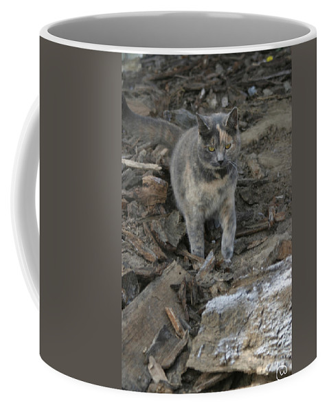 Soldier Coffee Mug featuring the photograph On A Mission by Bjorn Sjogren