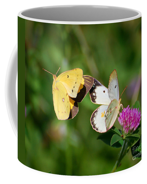 Butterfly Coffee Mug featuring the photograph On A Wing And A Prayer by Kerri Farley