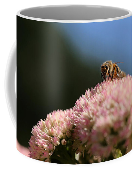 Bee Coffee Mug featuring the photograph On Flower Mountain by Angela Rath