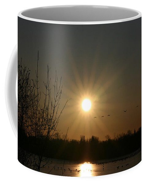 Geese Water Lake Ice Trees Nature Sunrise Sun Cold Morning Ducks Birds Coffee Mug featuring the photograph On Frozen Pond by Andrea Lawrence
