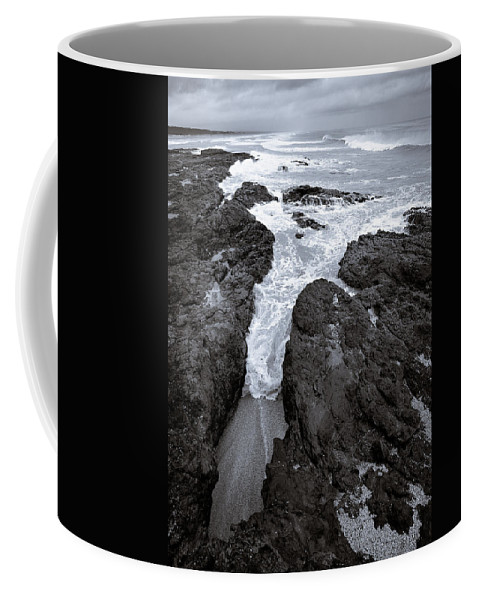 New Zealand Coffee Mug featuring the photograph On The Rocks by Dave Bowman