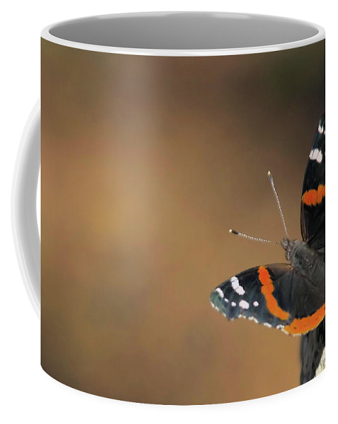 Butterfly Coffee Mug featuring the photograph On The Rocks by Karol Livote