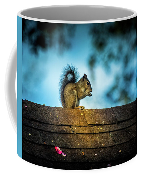 Squirrel Coffee Mug featuring the photograph On The Roof by Larry Jones