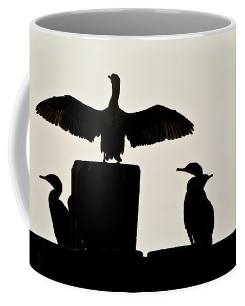 Birds Coffee Mug featuring the photograph On The Stump by Ches Black