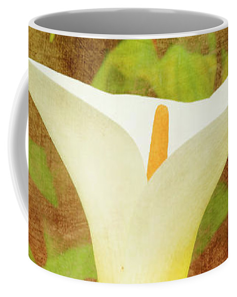 Lily Coffee Mug featuring the photograph One Arum Lily by Terri Waters