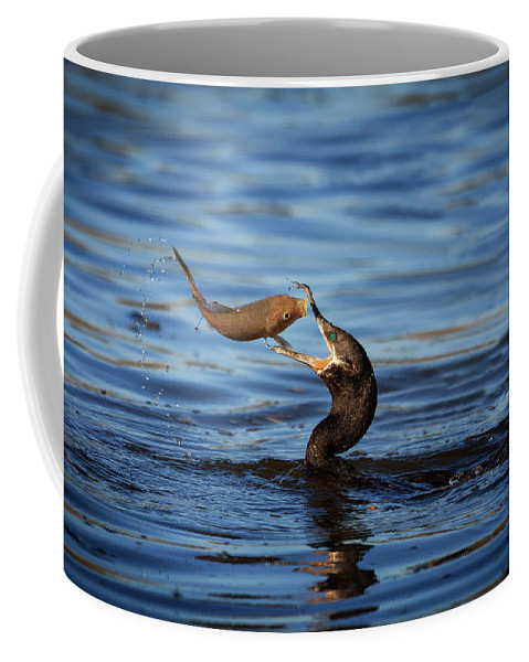 Action Coffee Mug featuring the photograph One Final Glance by Rick Furmanek