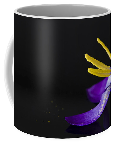 Crocus Coffee Mug featuring the photograph One Flower by Svetlana Sewell