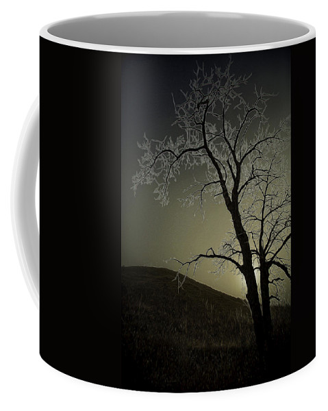Glenbow Ranch Provincial Park Coffee Mug featuring the photograph One Frosty Morning by J and j Imagery